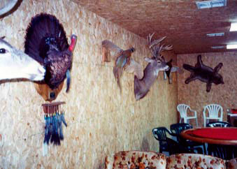 kansas bird hunt lodging